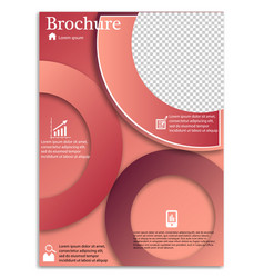 Flyer design business brochure template annual vector