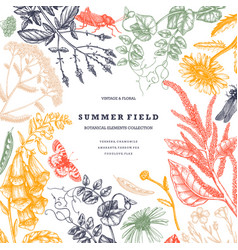 summer wild flowers design floral card or vector image