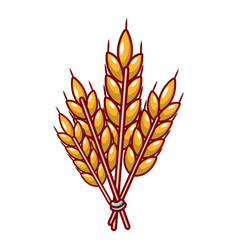 Winter wheat icon cartoon style vector