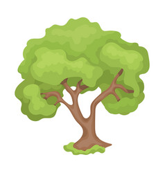 an old tree with a large green crownfarm and vector image