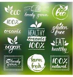 Eco organicbio logos vegan natural food vector