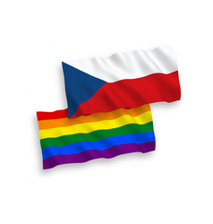 flags czech republic and rainbow gay pride on a vector image