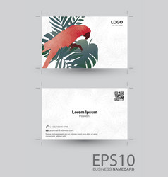 macaw bird and tropical green leaf namecard vector image