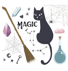 magic set cat potion broom web vector image