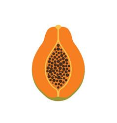 papaya fruit icon symbol eps10 vector image