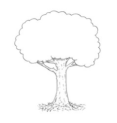 pen and ink hand drawing of tree vector image