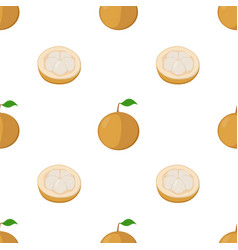 Seamless pattern of santol exotic fruit vector