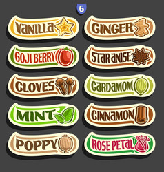 set of labels for culinary spices vector image