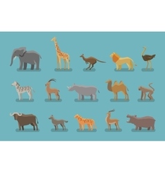 Animals set of colored icons symbols such vector image