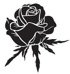 rose bloom vector image