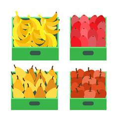 Banana fruit tropical food ripe apples set vector