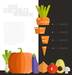 Fresh Vegetables Infographic vector image