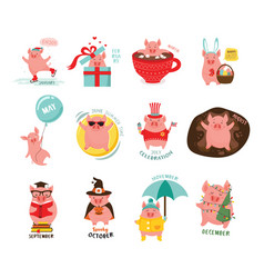 Monthly cartoon cute pigs for 2019 calendar vector