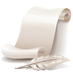 Paper scroll with feather vector image