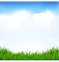 Blue sky and greeen grass vector