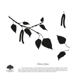 Black silhouette of birch branch vector image vector image