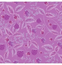 Raspberries seamless pattern with violet raspberry vector image vector image