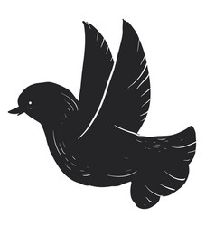 black dove on white background vector image