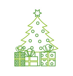 christmas tree pine gift boxes decoration vector image