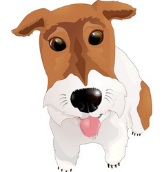 Fox terrier sticking his tongue out vector