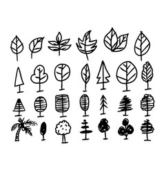 hand draw leaf icon vector image