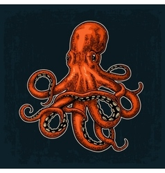 Octopus sea monster vector