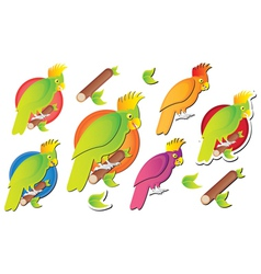 parot cartoon vector image