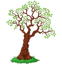 Tree with green leafage vector