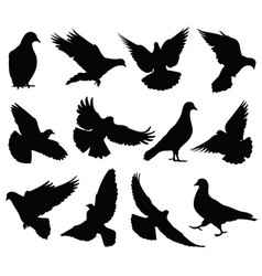 flying dove silhouettes isolated pigeons vector image vector image