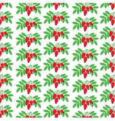 Background pattern with rose hip vector