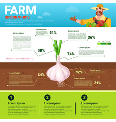 Farming infographics eco friendly organic natural vector