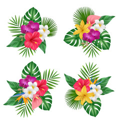 flowers bouquet tropical exotic plants bali vector image