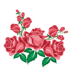 Pink roses in cartoon style vector