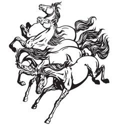 Running wild horses vector