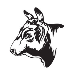 abstract contour portrait bull in profile vector image