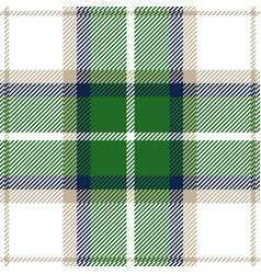 green and blue tartan plaid seamless pattern vector image