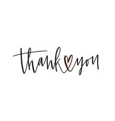thank you handwritten lettering gratitude vector image