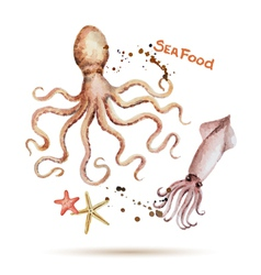 Watercolor octopus and squid vector image
