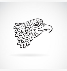 eagle head on white background bird wild vector image