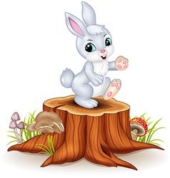 Cute bunny standing on tree stump vector image