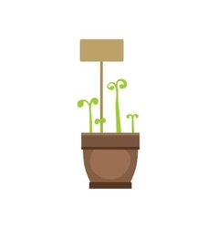 Several Sprouts In One Pot vector image vector image
