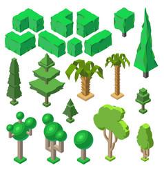 3d isometric plants trees bushes palms vector