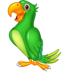 Cartoon happy parrot posing vector