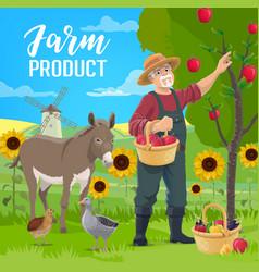farmer fruits and vegetables harvest vector image