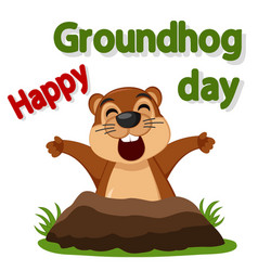 groundhog wakes up and stretches on a white vector image