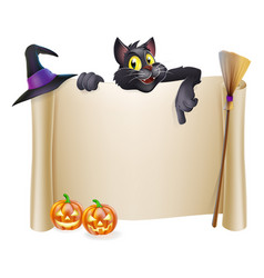 Halloween scroll with cat vector