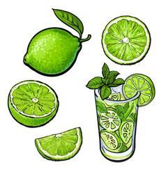 Whole half quarter lime and glass of lemonade vector