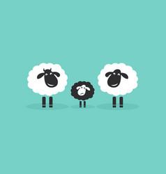 Family sheep on blue background farm animals vector