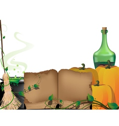 Witchcraft accessories vector image vector image