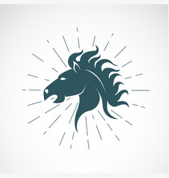 horse head on white background animal horse vector image vector image
